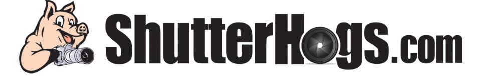 Shutter Hogs logo